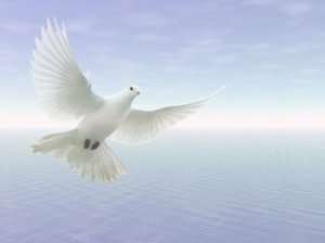 Holy Spirit like a dove over the ocean