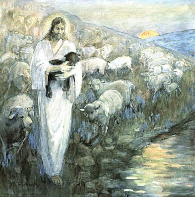 Jesus the Shepherd of Sheep