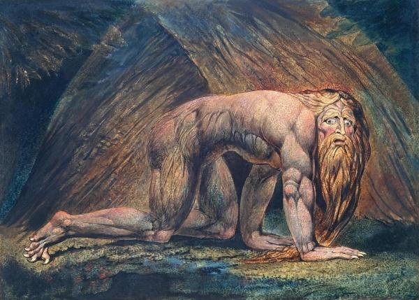 Nebuchadnezzar as a beast